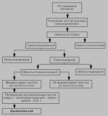 Таблица по микробиологии возбудители бактериальных кишечных инфекций