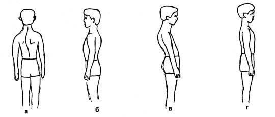 структура характера формирование характера реферат