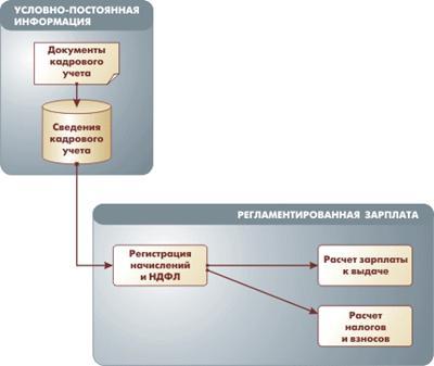 Ревизор может проверить пропускную систему организации.