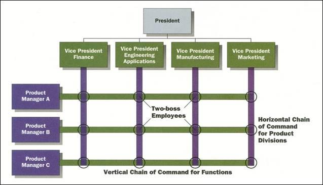 Matrix Organization Structure: Advantages and Disadvantages ...